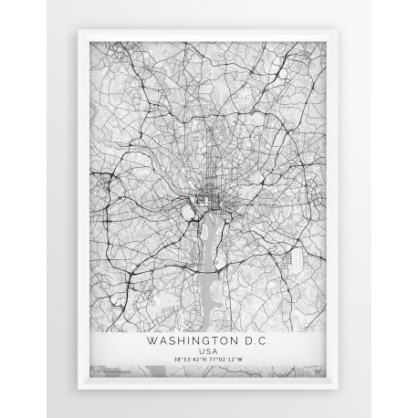Mapa plakat WASHINGTON- linia WHITE